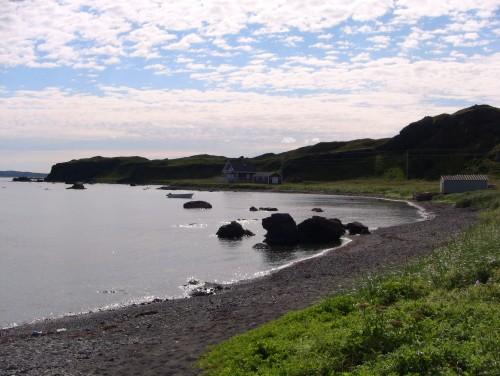 Newfoundland Scene